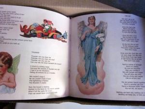 LSR-FEWGLB-Booklet